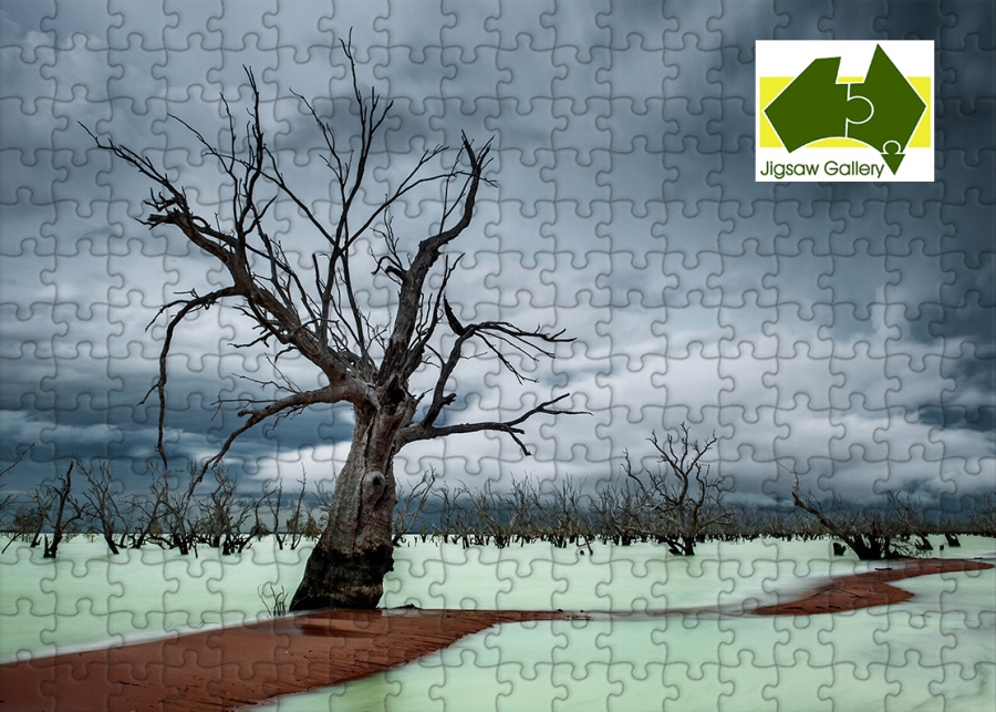 Jigsaw puzzles now available