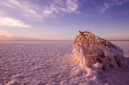 Lake Eyre Photo Tour April 2016